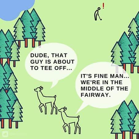 Deer on Golf Fairway